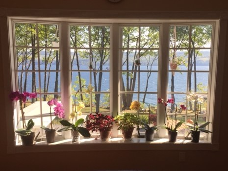 picture window with assorted flowers in bay