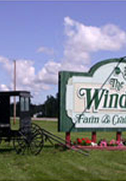An Amish buggy sits beside a white sign with green trim for The Windmill Farm & Craft Market